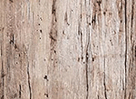 WA Beach Antique Wood