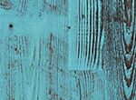 WA Border Blue Pine
